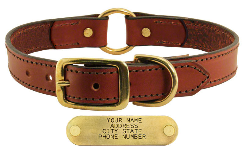 0ce5db3ab9a53 Leather Dog Collar with Name Plate. $19.99 (Save $5.00)
