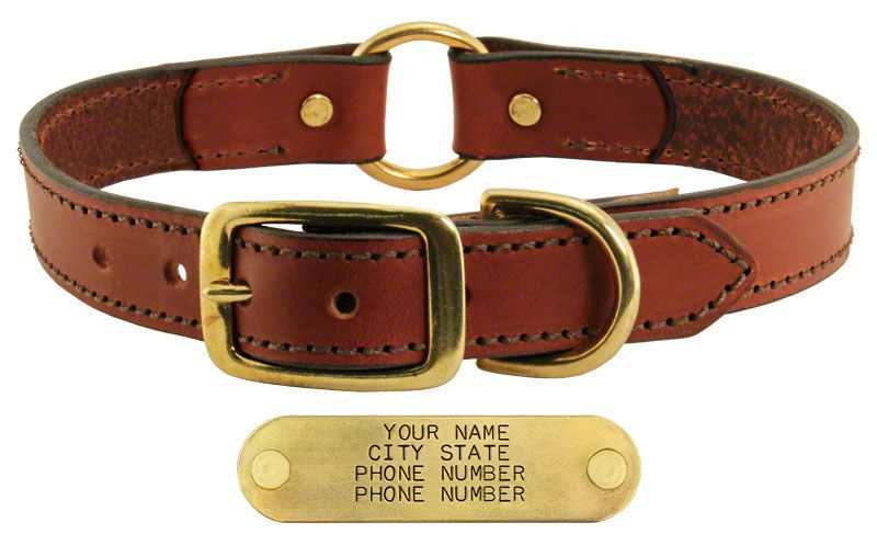 e876456d805 Leather Dog Collar with Name Plate. $19.99 (Save $5.00)