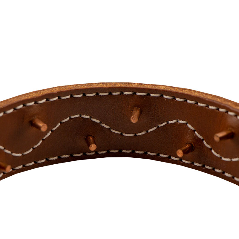 Leather Pinch Collar Detail