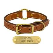 shop LONDON TAN 1in. Center Ring Leather Collar