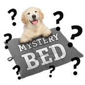 shop MEDIUM Bizzy Beds® Dog Bed -- MYSTERY BED!