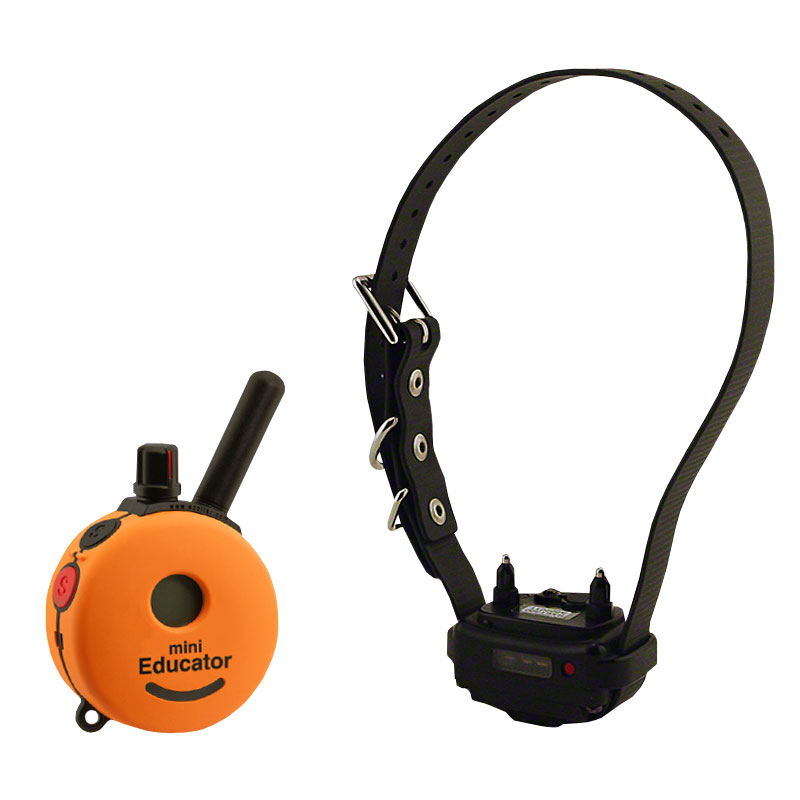 Mini Educator ET-300-A Remote Training Collar 1-dog  $179 99 (Save