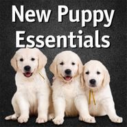 shop Puppy Products & Training Supplies