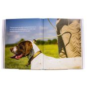 shop Training Bird Dogs Inside Picture Detail