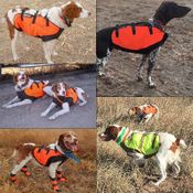 shop Sylmar Body Guard Dog Vest in Use