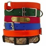 shop Nylon Dog Collars
