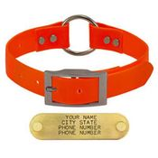 shop ORANGE 1 in. Day Glow Center-Ring Collar