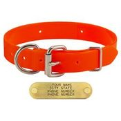 shop ORANGE 1 in. Day Glow D-End Collar