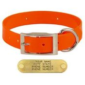 shop ORANGE 1 in. Day Glow Standard Collar