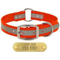 shop ORANGE 1 in. Reflective Center Ring Collar