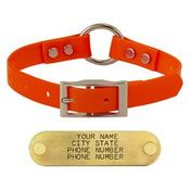 shop ORANGE 3/4 in. Center Ring Day Glow Collar