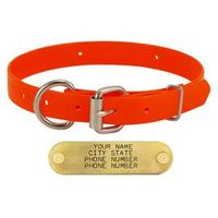 shop ORANGE 3/4 in. Day Glow D-End Puppy Collar
