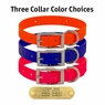 Day Glow Standard Collar Options