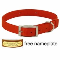 shop ORANGE Scott Field-Grade Treated Nylon Standard Dog Collar