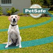 shop PetSafe Containment System and Collar Sale