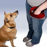 shop PetSafe Treat Pouch Sport Training