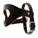 shop Pheasant Harness - TBI