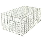 shop Pigeon Trap 24 in. x 12 in. PT2412/KD by Tomahawk Live Trap