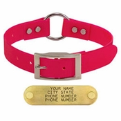shop PINK 1 in. Day Glow Center-Ring Collar