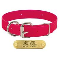 shop PINK 1 in. Day Glow D-End Collar