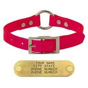 shop PINK 3/4 in. Center Ring Day Glow Collar