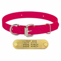 shop PINK 3/4 in. D-End Day Glow Collar