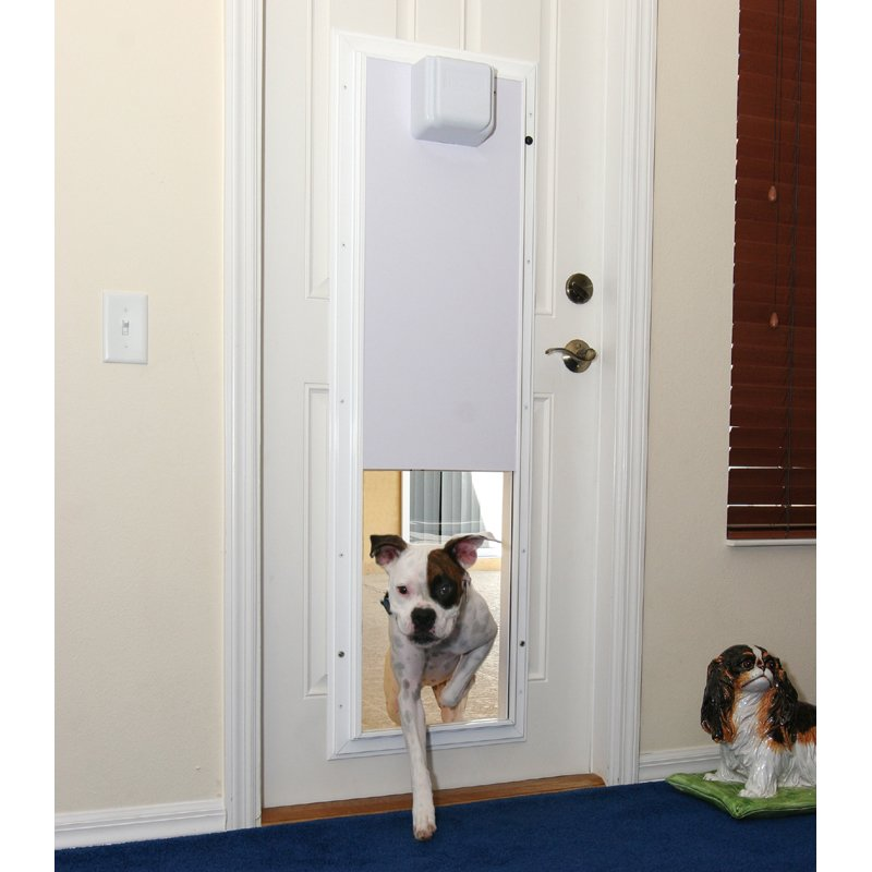 power and tech up door cat to pet large electronic x px fully for pets p lb electric dog high doors in automatic