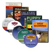 shop Pointing Dog Videos & DVDs