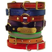 shop Puppy and Small Dog Collars (FREE ID PLATES!)