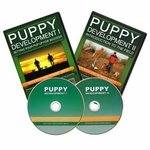 shop Puppy Development I and II with Rick and Ronnie Smith DVDs