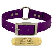 shop PURPLE 1 in. Day Glow Center-Ring Collar