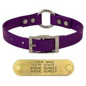 shop PURPLE 3/4 in. Center Ring Day Glow Collar