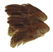 shop Quail Wings -- 2 Pack