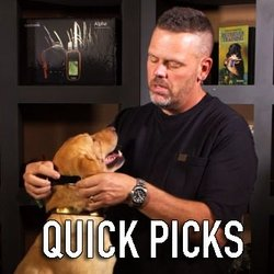 shop Read Steve's Quick Picks for Dog Training Collars