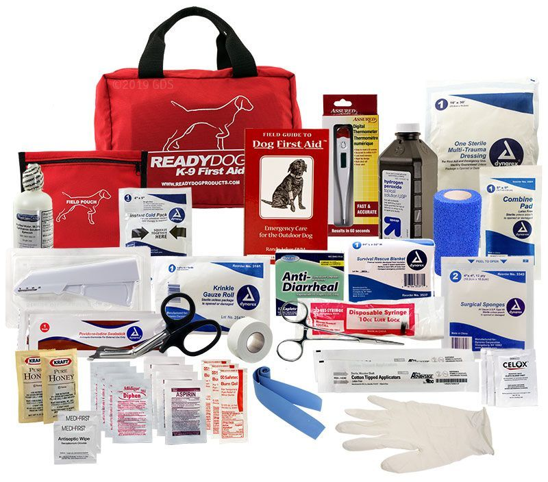 Ready Dog Professional Canine First Aid