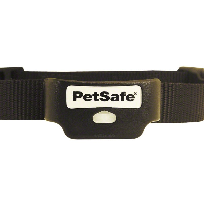 Rechargeable Inground Collar Detail