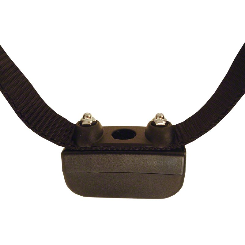 Rechargeable Inground Collar Probes Detail