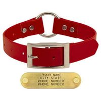 shop RED 1 in. Day Glow Center-Ring Collar
