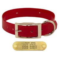 shop RED 1 in. Day Glow Standard Collar