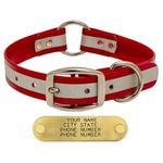 shop RED 1 in. Reflective Center Ring Collar