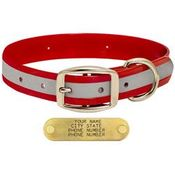 shop RED 1 in. Reflective Standard Collar