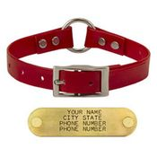 shop RED 3/4 in. Center Ring Day Glow Collar