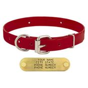 shop RED 3/4 in. D-end Day Glow Collar
