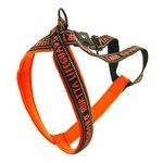 "shop SAVE 20%! -- ""Scratch & Dent"" ORANGE Hurtta Padded Reflective Y-Harness for Dogs"
