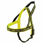 shop SAVE 20%! -- Scratch & Dent YELLOW Hurtta Standard Padded Reflective Dog Harness