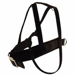 shop Scott Padded Roading Harnesses