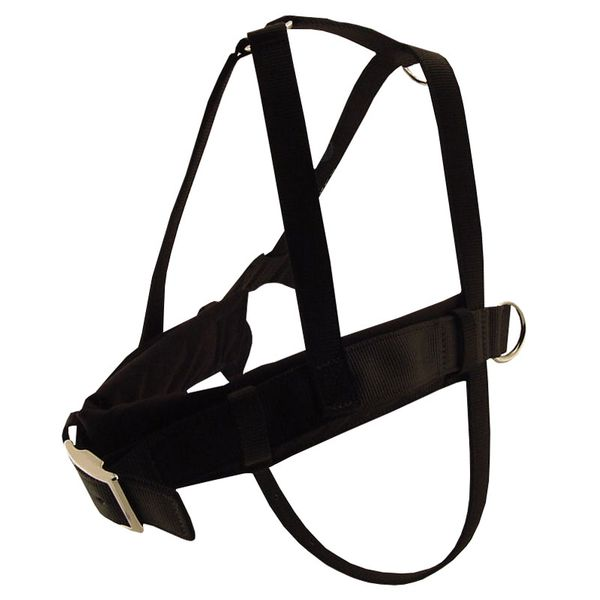 Scott Padded Roading Harnesses   48 95