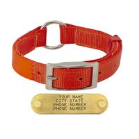 shop 1 in. Field-Grade Reflexite Nylon Center-Ring Dog Collar