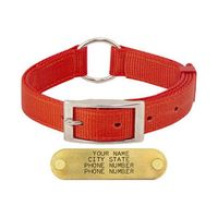 shop 1 in. Field-Grade Treated Nylon Center-Ring Dog Collar