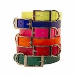 shop Shop Dog Collars By Color